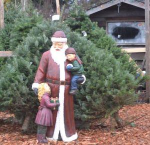 Father Christmas at Tree Farm