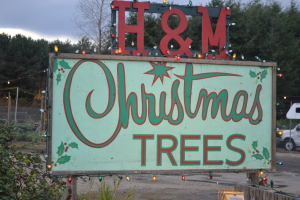 HM Christmas Trees