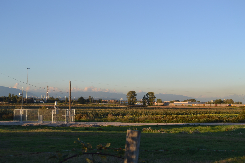 De Putter farm