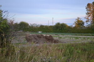Dumping on farmland